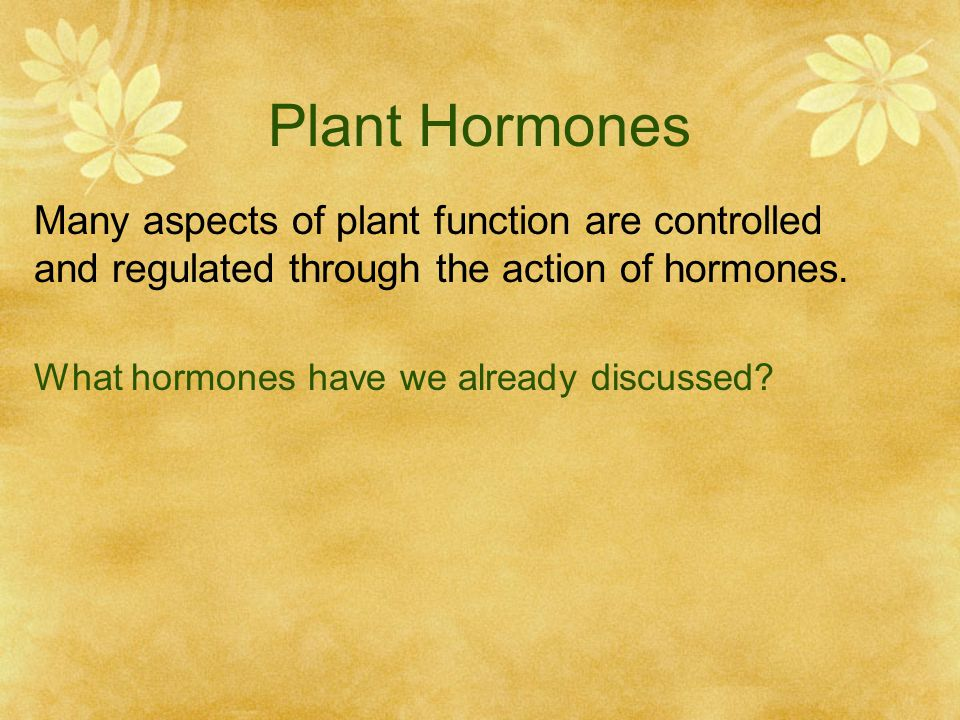 Plant Hormones Many aspects of plant function are controlled