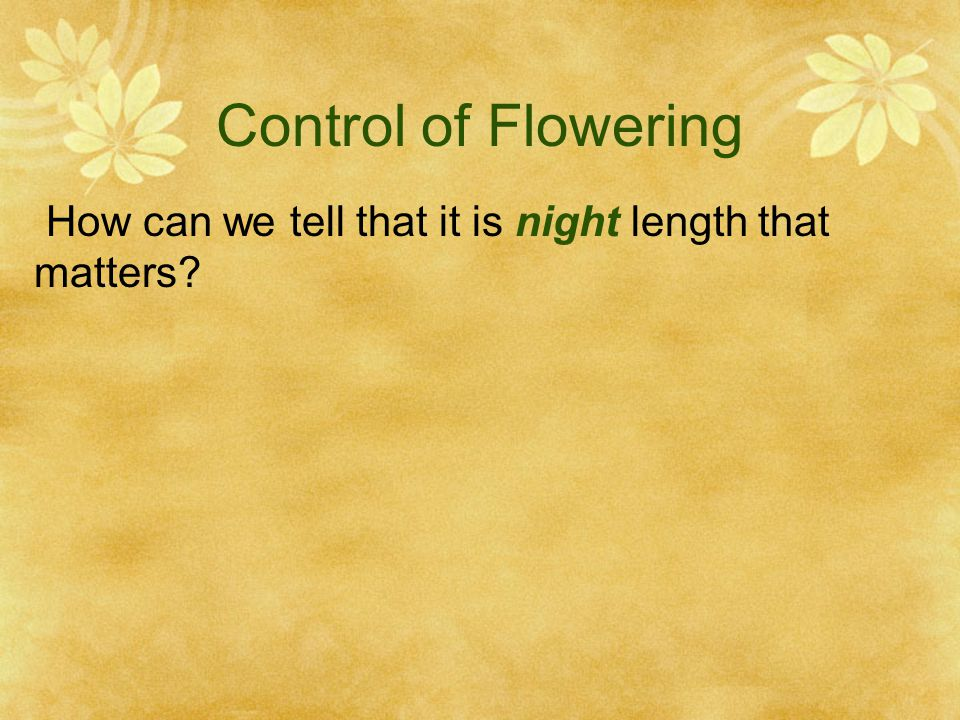 Control of Flowering How can we tell that it is night length that