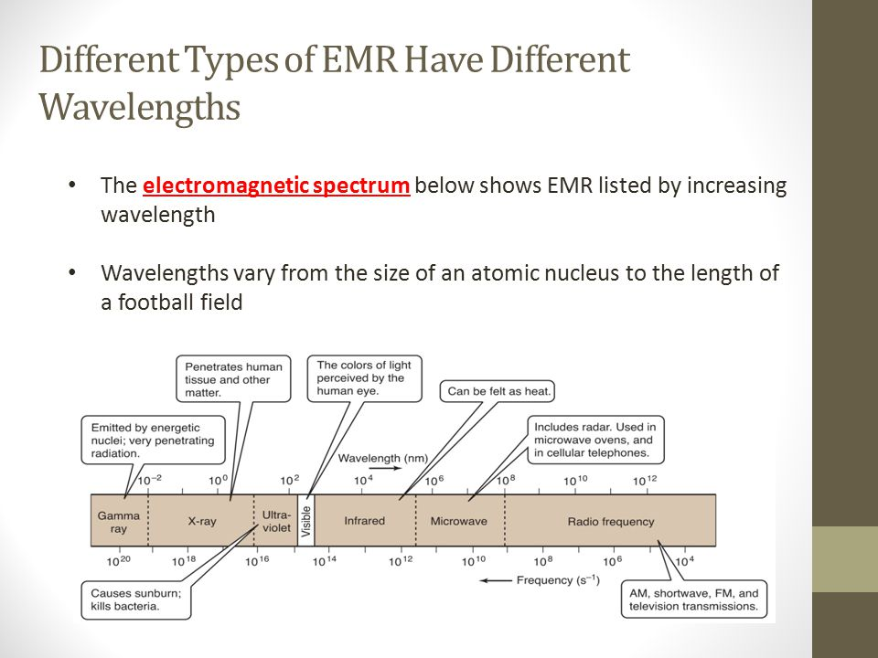 Different Types of EMR Have Different Wavelengths