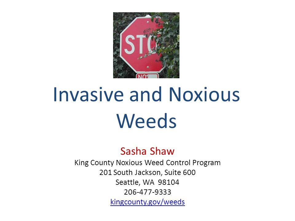 Invasive and Noxious Weeds