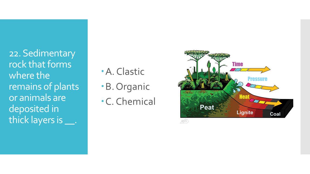 A. Clastic B. Organic. C. Chemical. 22.