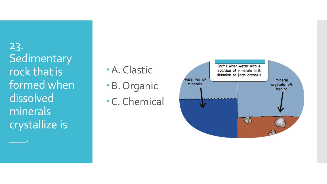 A. Clastic B. Organic. C. Chemical. 23.