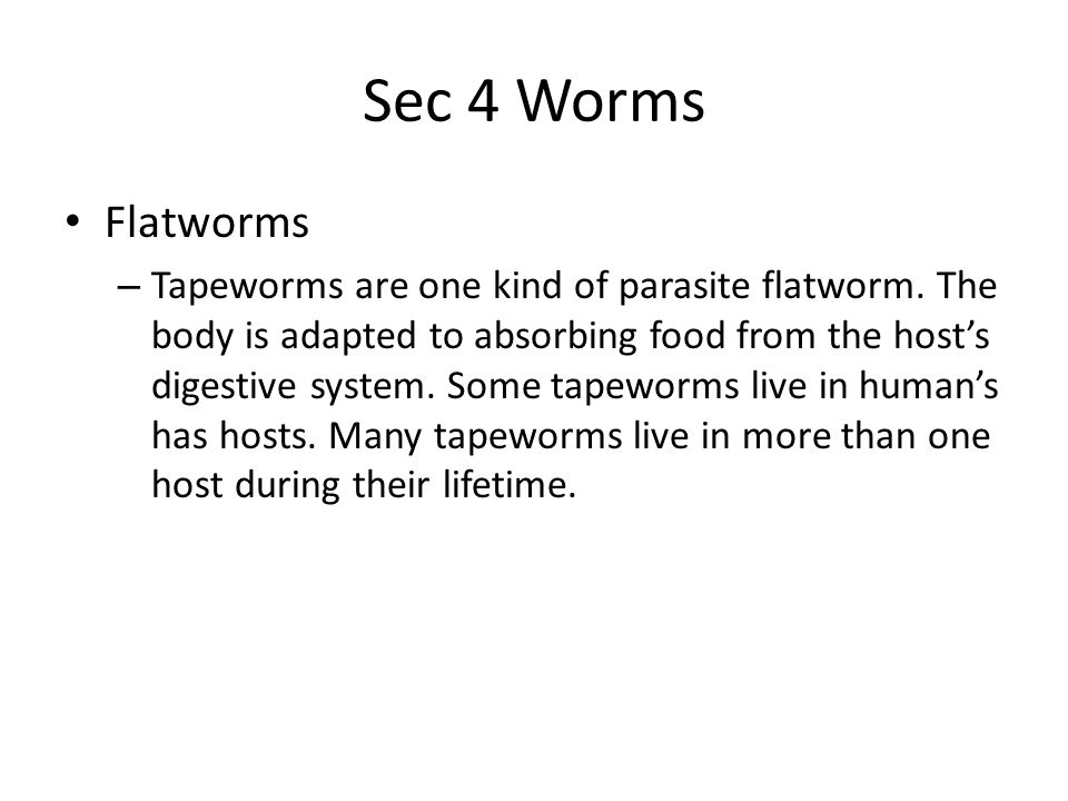Sec 4 Worms Flatworms.