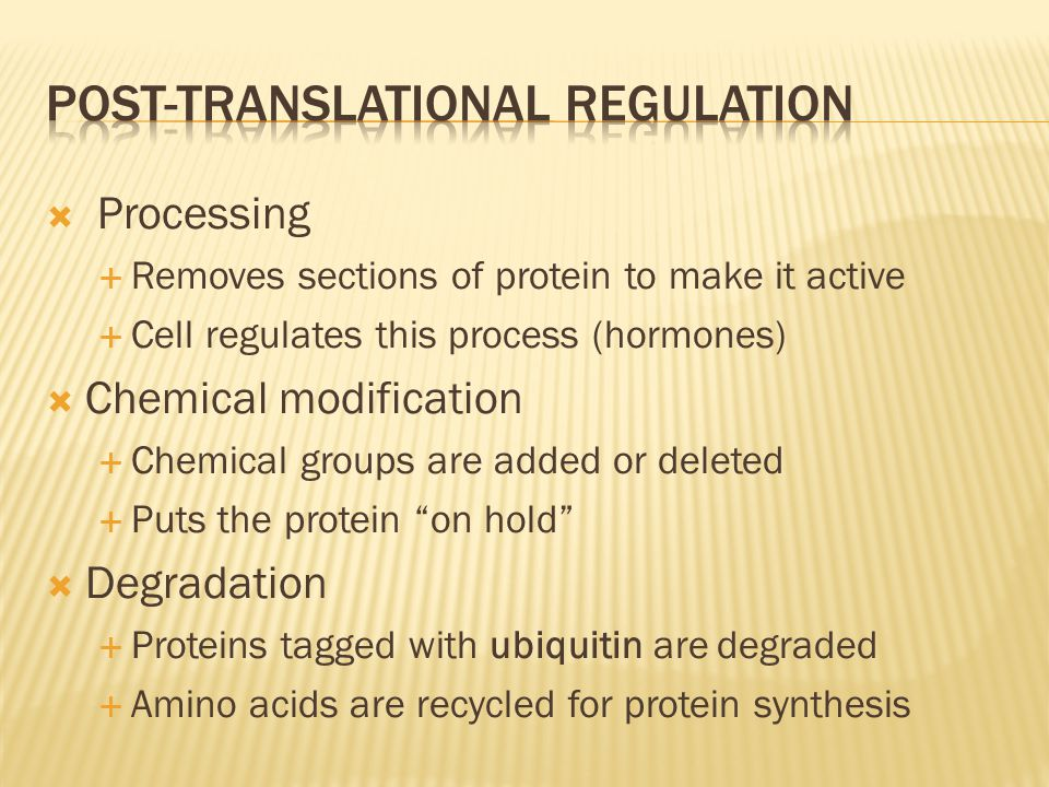 Post-translational regulation