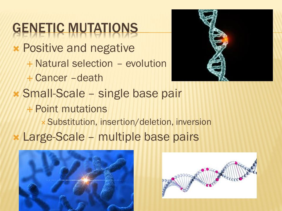 Genetic mutations Positive and negative Small-Scale – single base pair