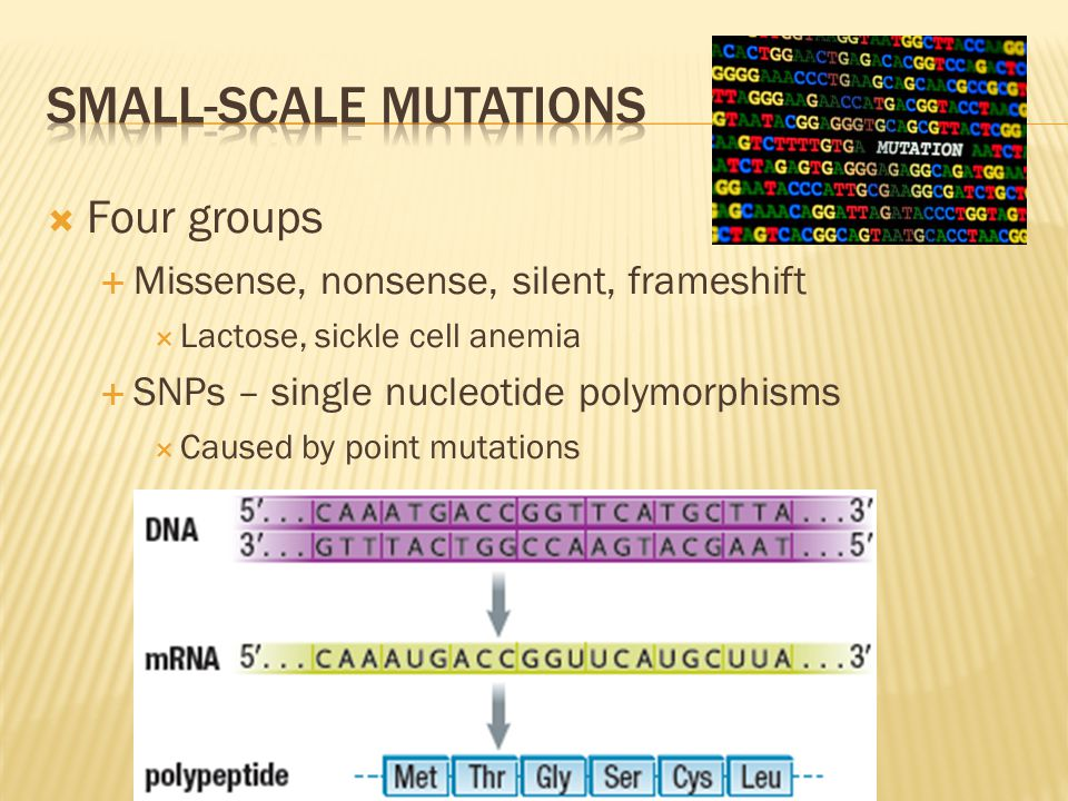 Small-scale mutations
