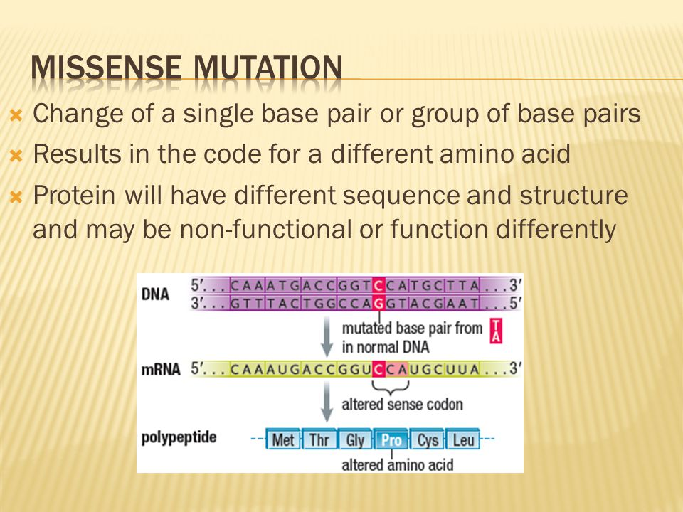 Missense mutation Change of a single base pair or group of base pairs