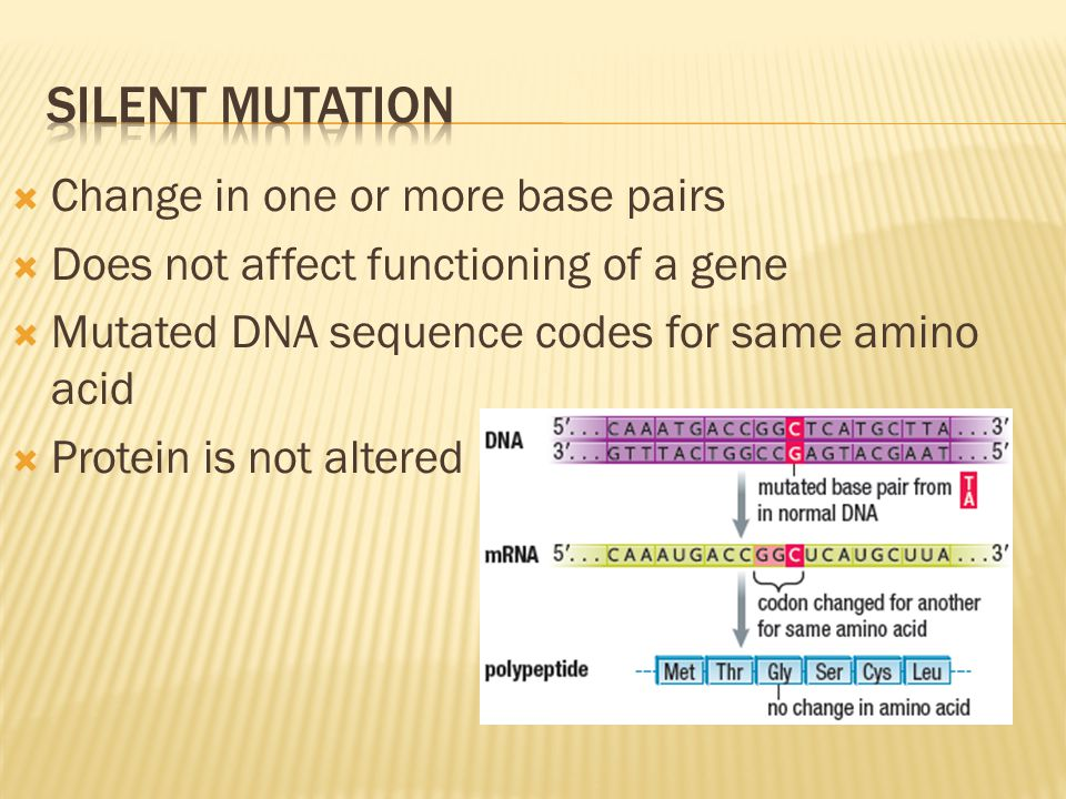 Silent mutation Change in one or more base pairs