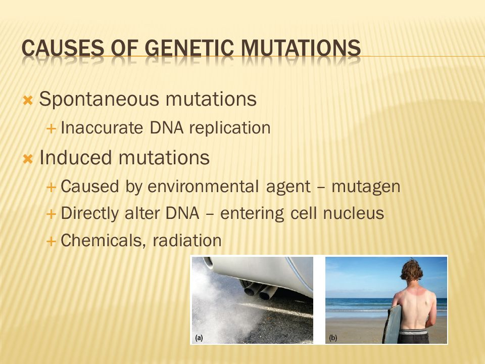 Causes of genetic mutations