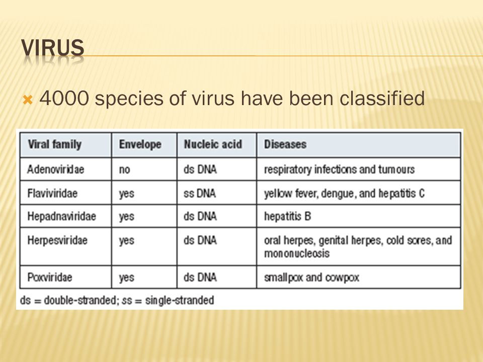 Virus 4000 species of virus have been classified