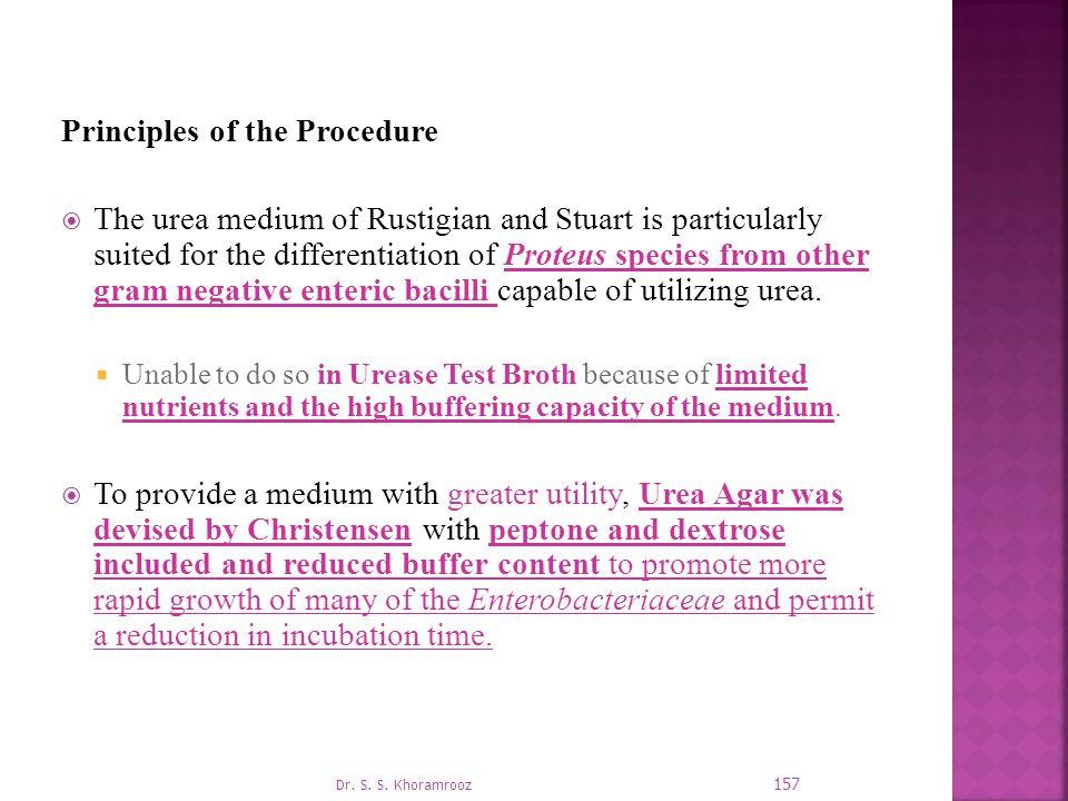 Principles of the Procedure