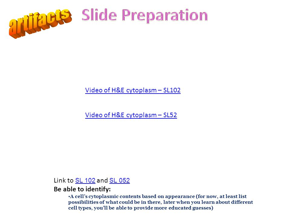 Slide Preparation artifacts Video of H&E cytoplasm – SL102