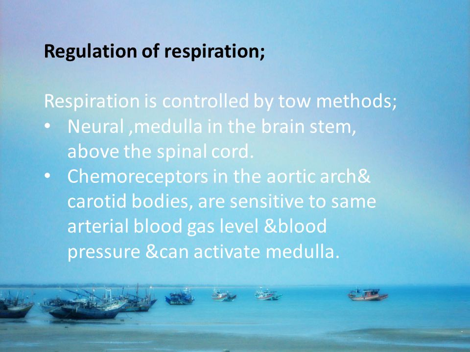 Regulation of respiration;