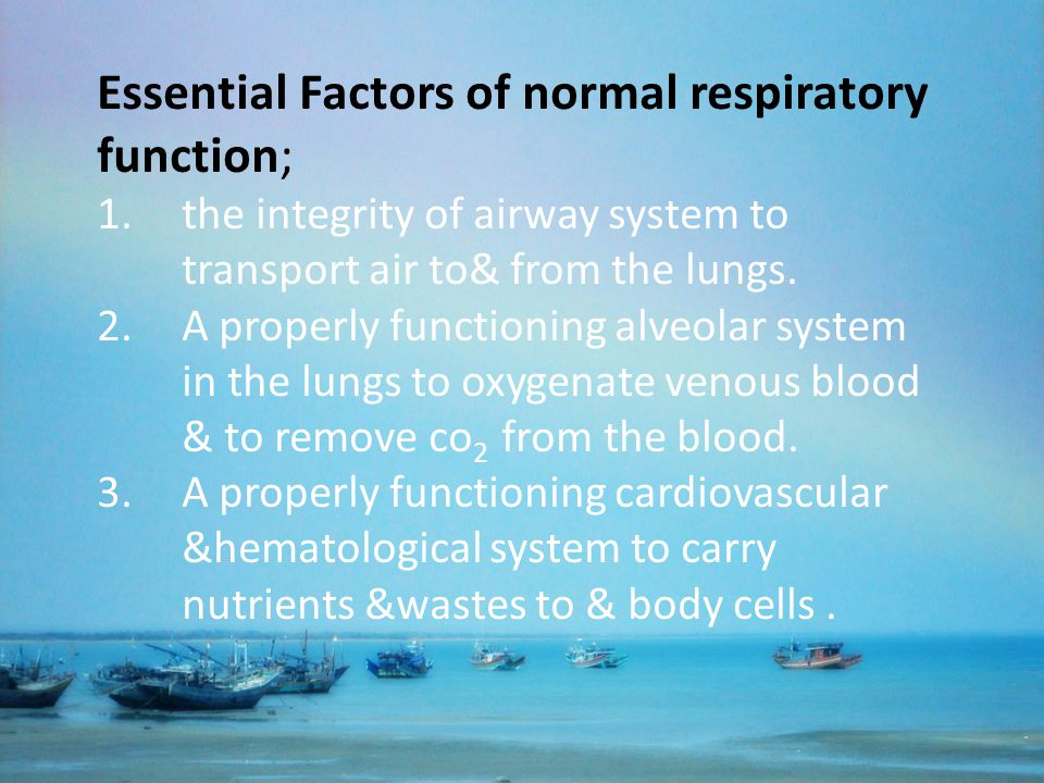 Essential Factors of normal respiratory function;