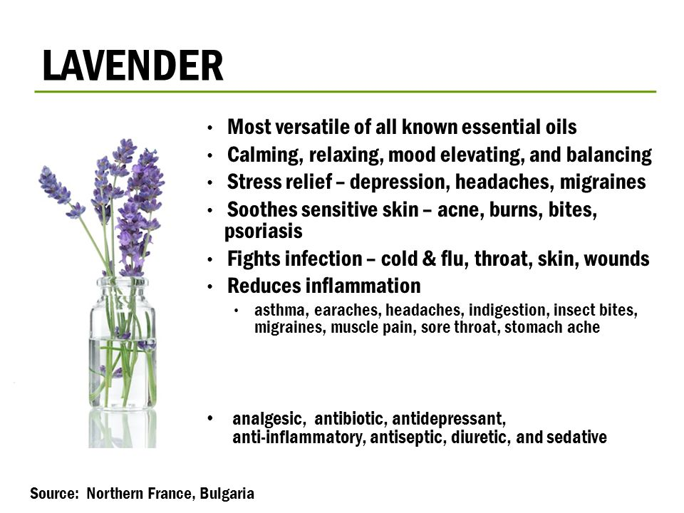 LAVENDER Most versatile of all known essential oils