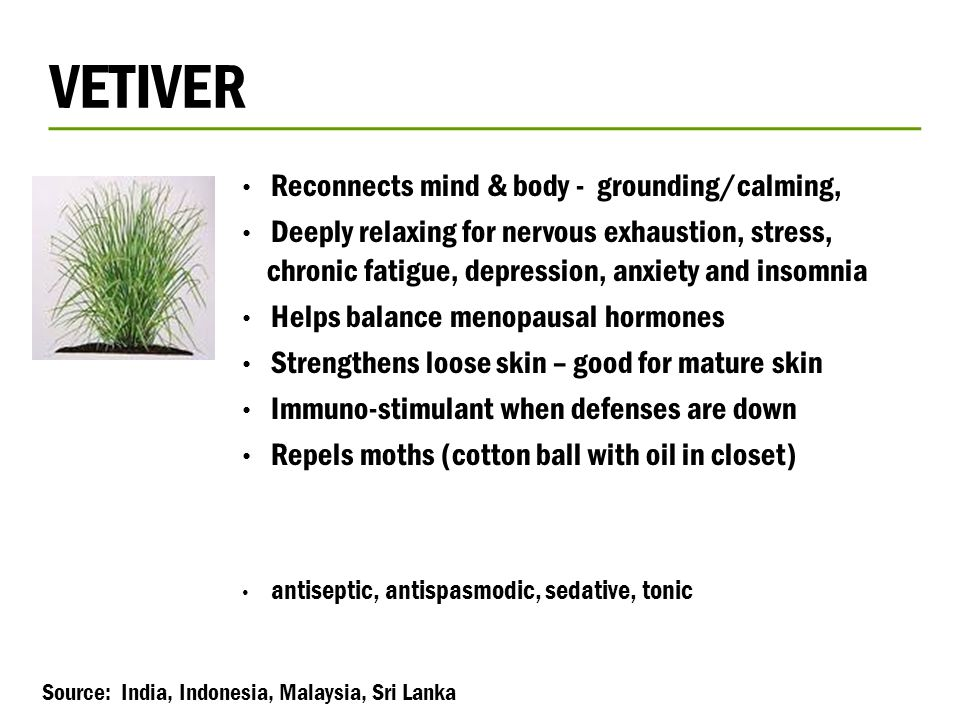 VETIVER Reconnects mind & body - grounding/calming,