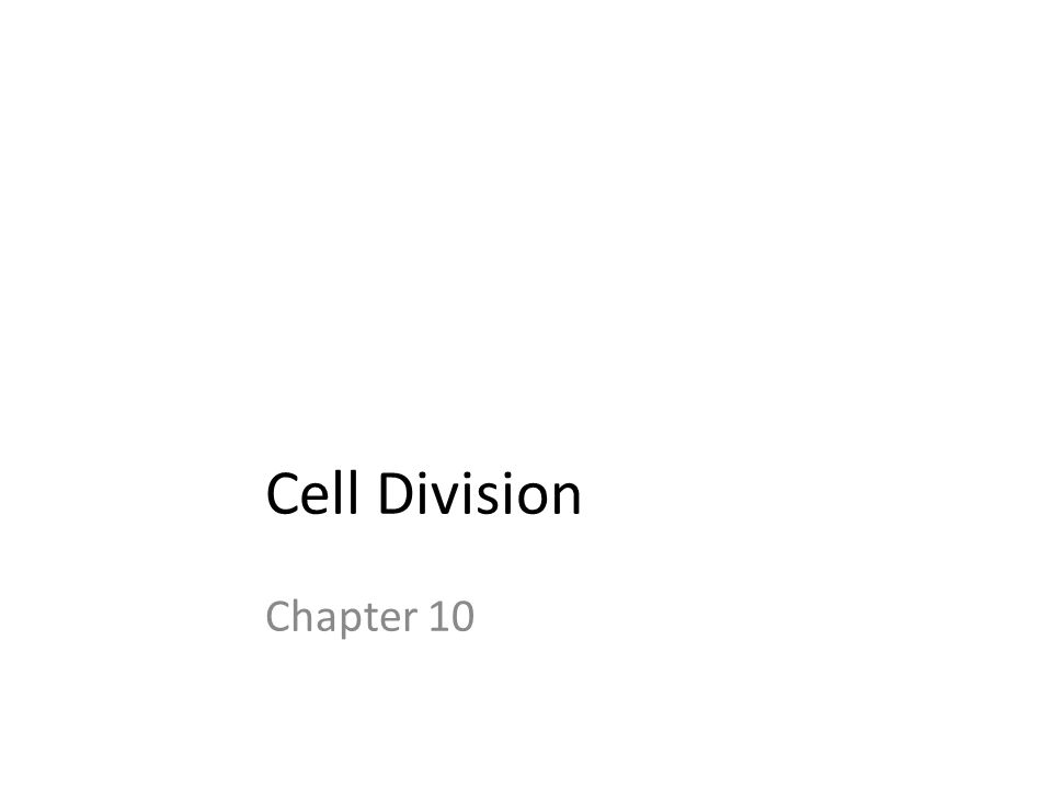Cell Division Chapter 10