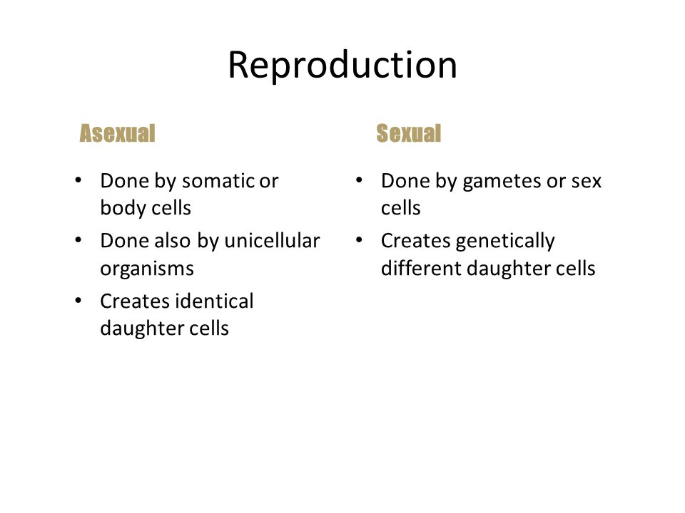 Reproduction Asexual Sexual Done by somatic or body cells