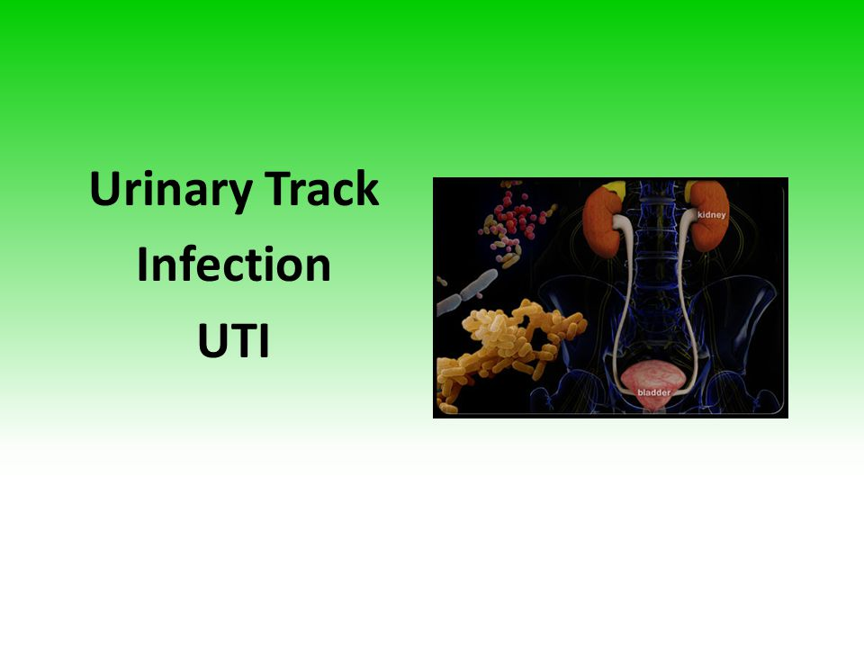 Urinary Track Infection UTI