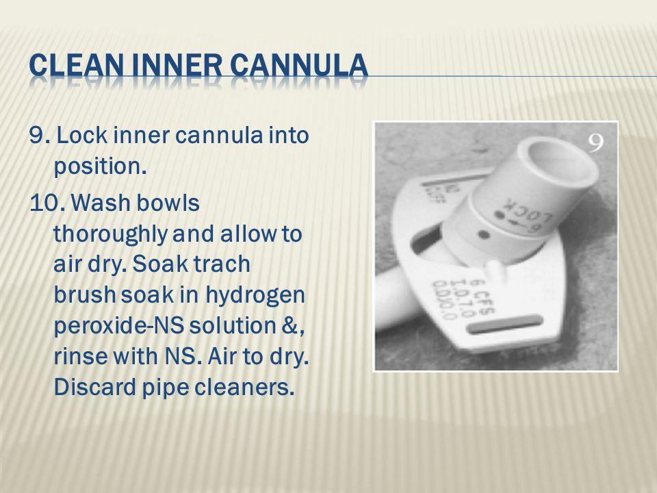 Clean inner cannula
