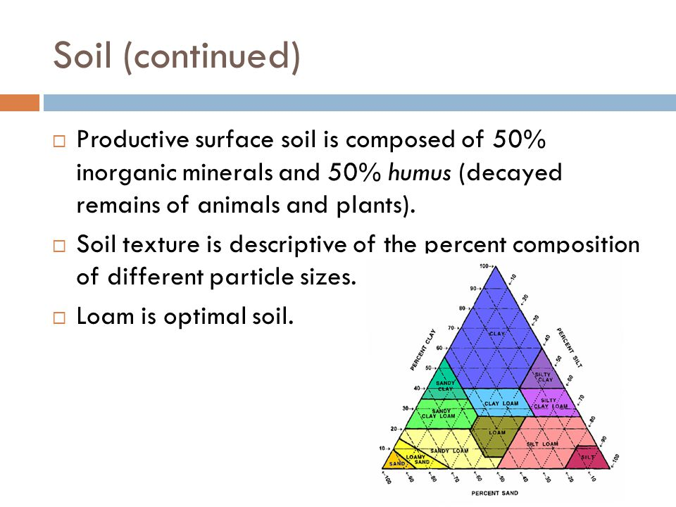 Soil (continued) Productive surface soil is composed of 50% inorganic minerals and 50% humus (decayed remains of animals and plants).