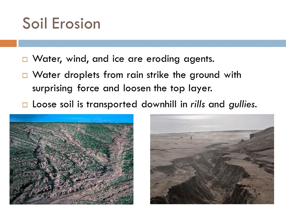 Soil Erosion Water, wind, and ice are eroding agents.
