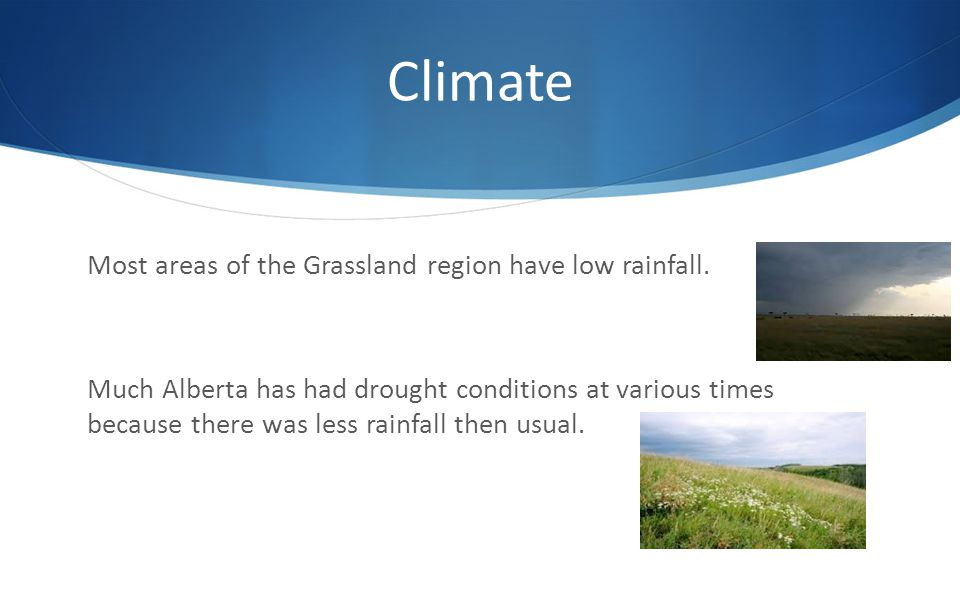 Climate Most areas of the Grassland region have low rainfall.
