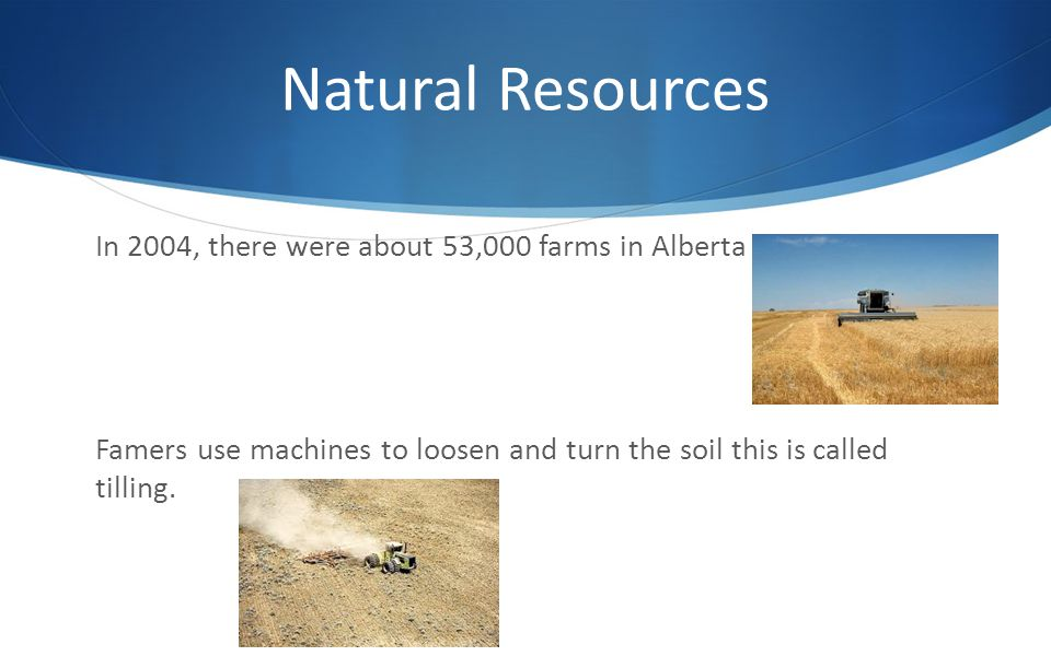Natural Resources In 2004, there were about 53,000 farms in Alberta