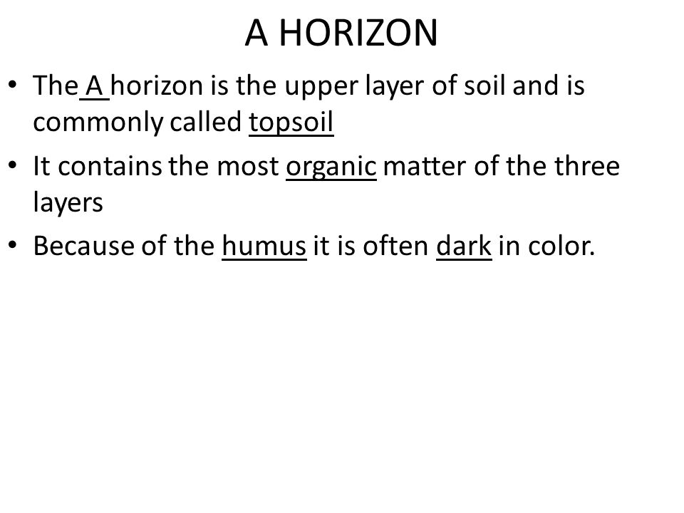A HORIZON The A horizon is the upper layer of soil and is commonly called topsoil. It contains the most organic matter of the three layers.