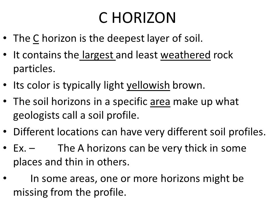 C HORIZON The C horizon is the deepest layer of soil.