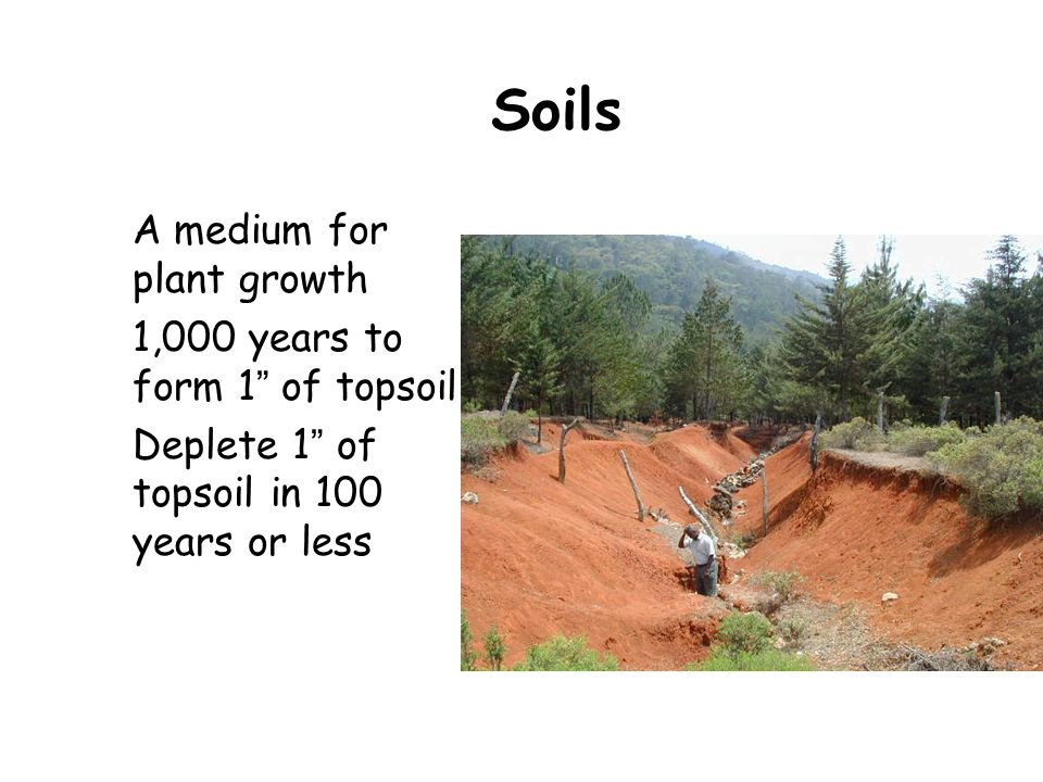 Soils A medium for plant growth 1,000 years to form 1 of topsoil