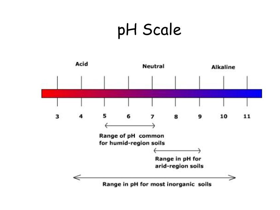 pH Scale pH Scale