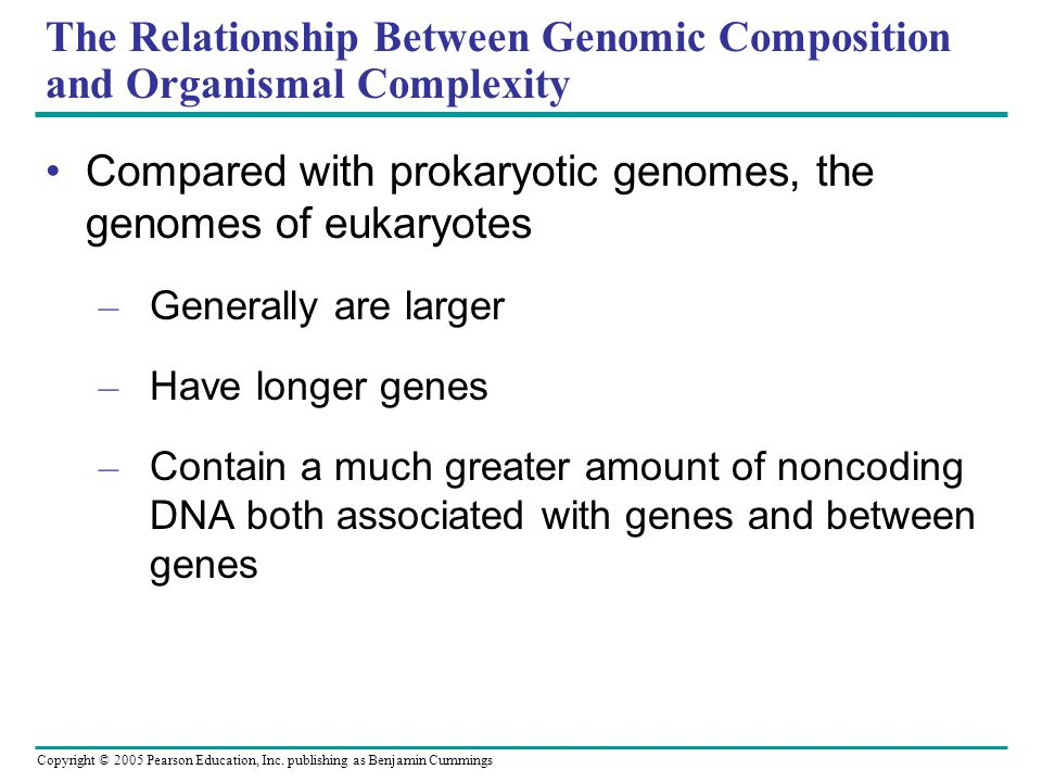 The Relationship Between Genomic Composition and Organismal Complexity
