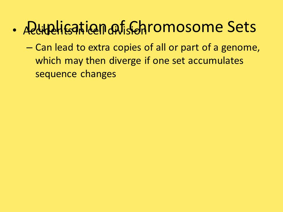 Duplication of Chromosome Sets