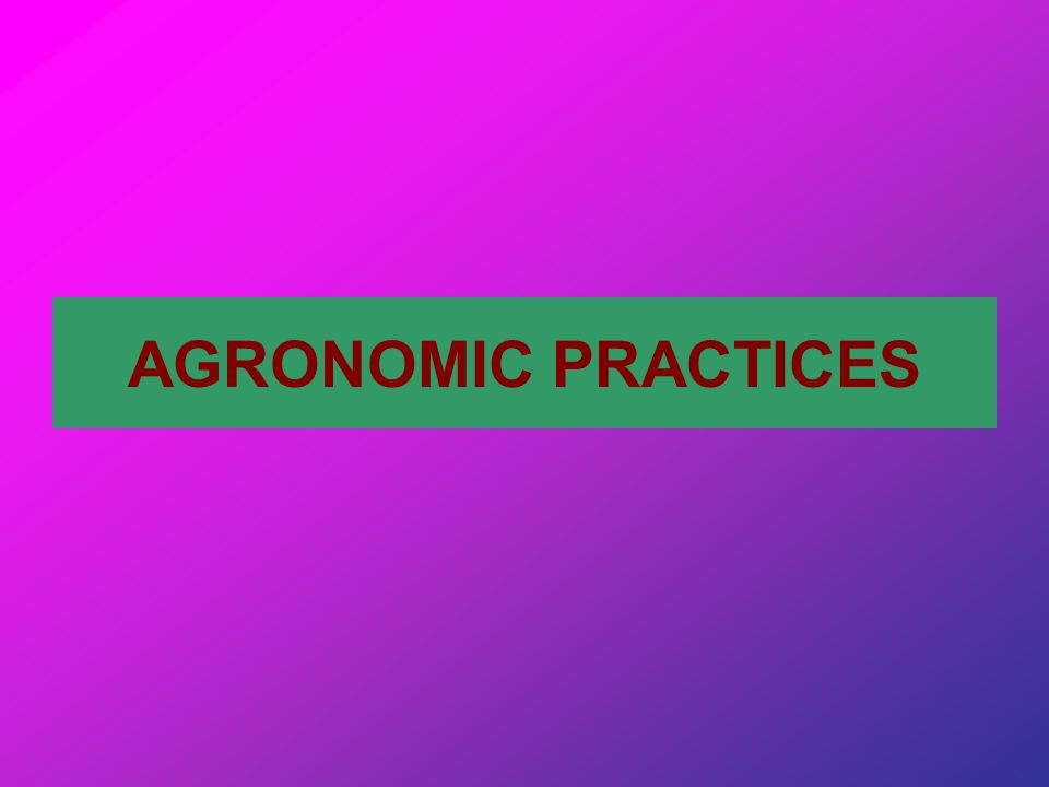 AGRONOMIC PRACTICES