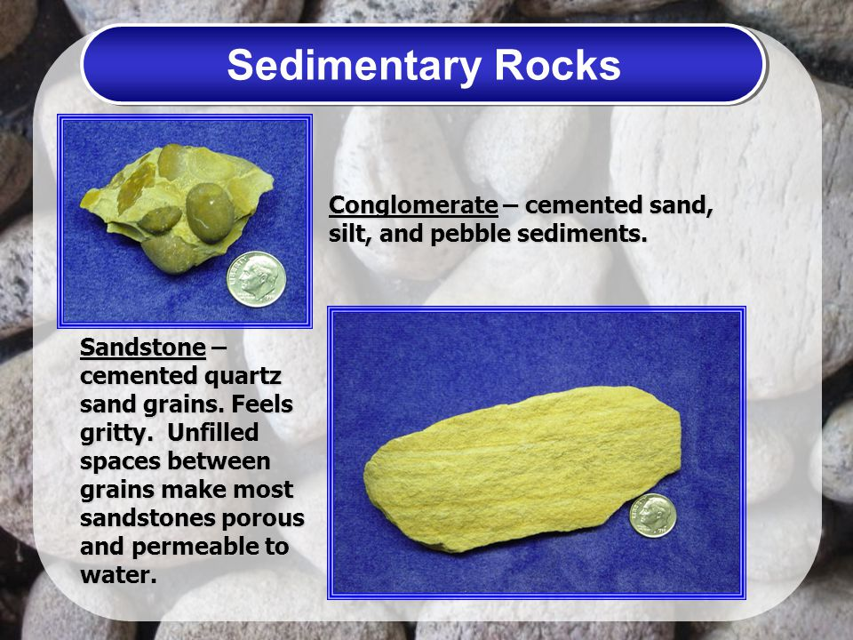 Sedimentary Rocks Conglomerate – cemented sand, silt, and pebble sediments.