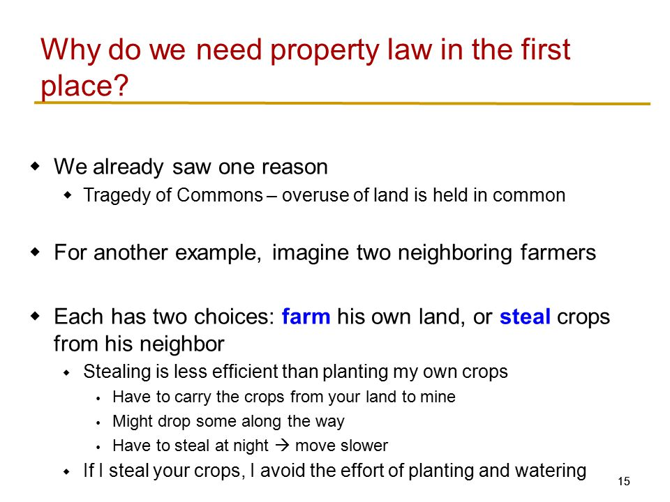 Why do we need property law in the first place