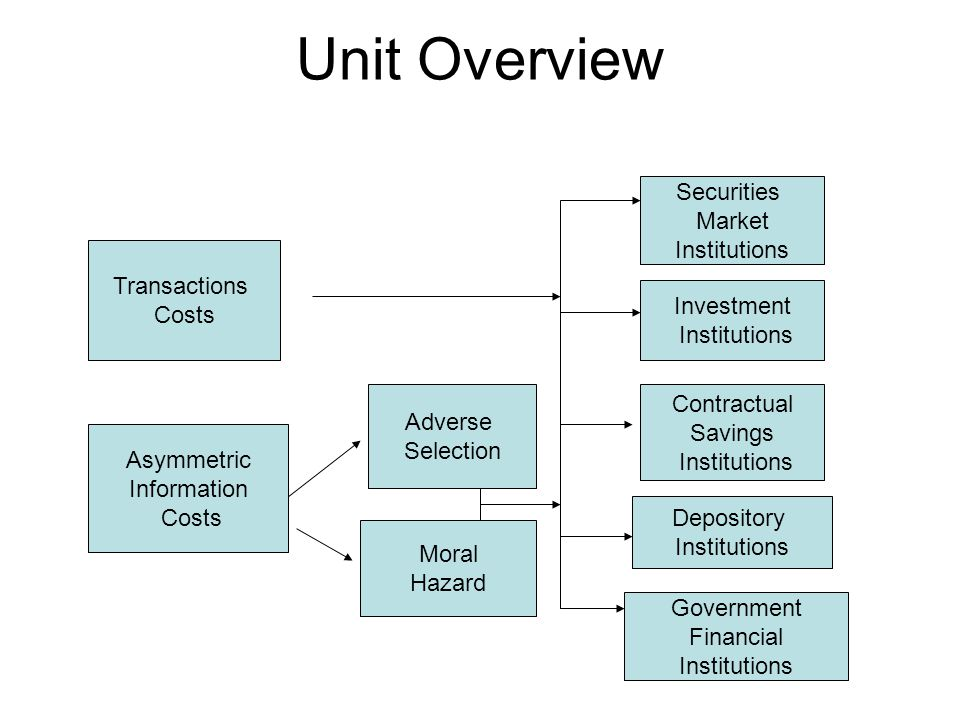 Unit Overview Securities Market Institutions Transactions Costs