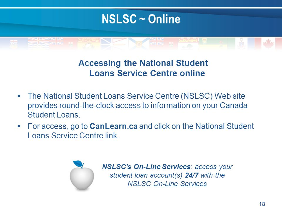 Accessing the National Student Loans Service Centre online
