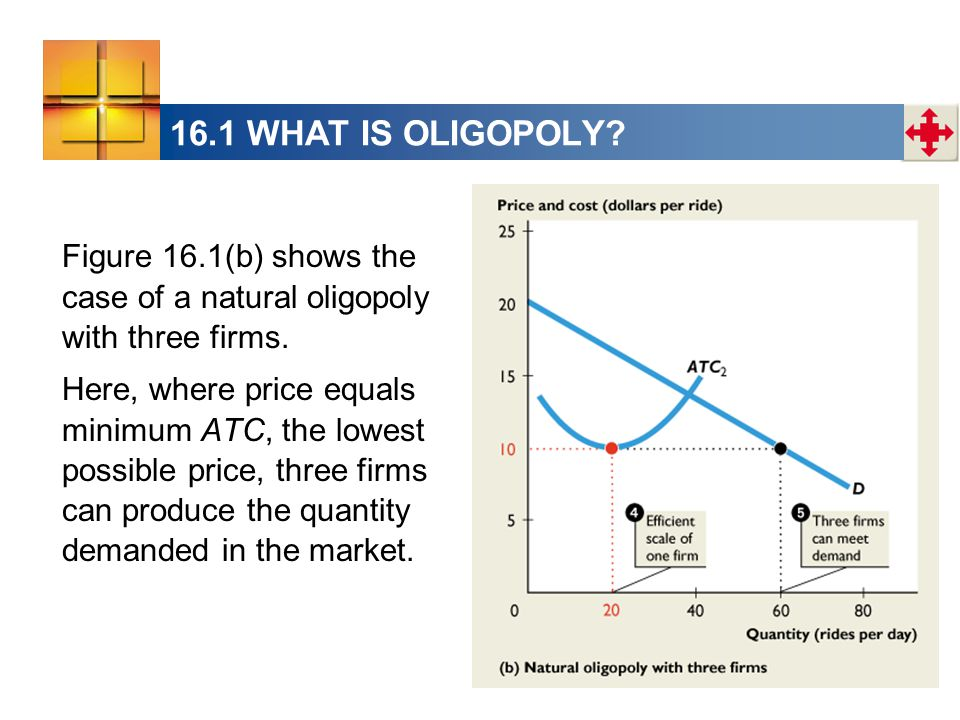 16.1 WHAT IS OLIGOPOLY Figure 16.1(b) shows the case of a natural oligopoly with three firms.