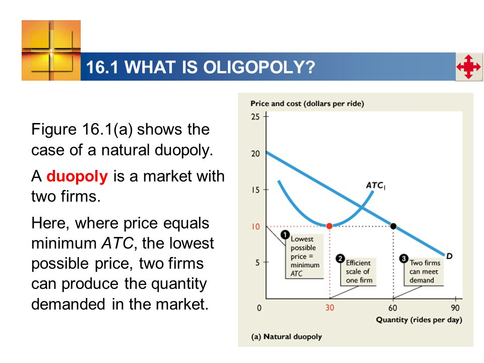 16.1 WHAT IS OLIGOPOLY Figure 16.1(a) shows the case of a natural duopoly. A duopoly is a market with two firms.
