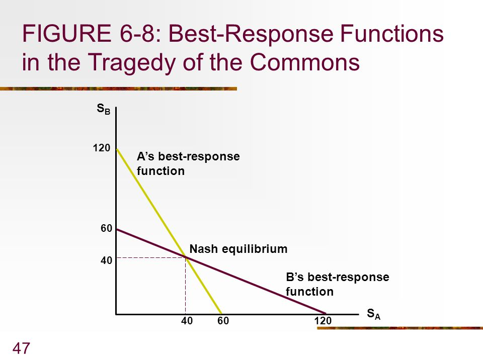 FIGURE 6-8: Best-Response Functions in the Tragedy of the Commons