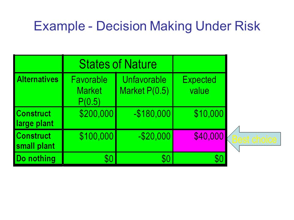 Example - Decision Making Under Risk