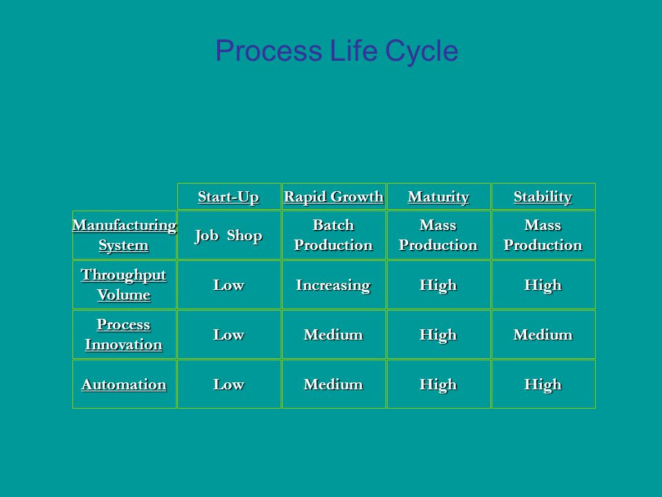 Process Life Cycle Start-Up Rapid Growth Maturity Stability Automation