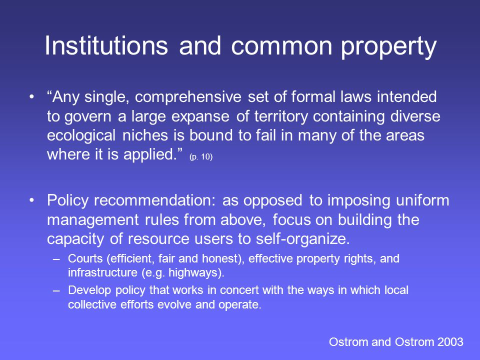 Institutions and common property