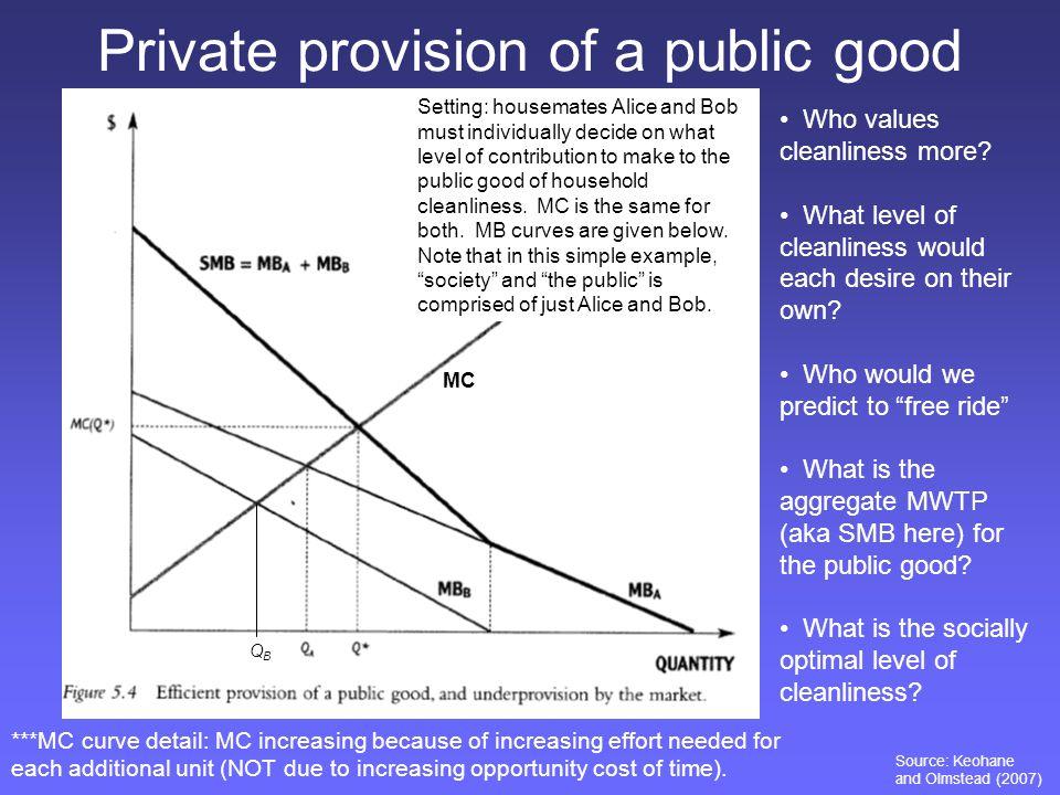 Private provision of a public good