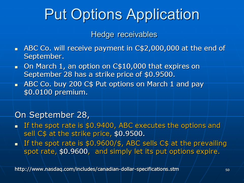 Put Options Application Hedge receivables