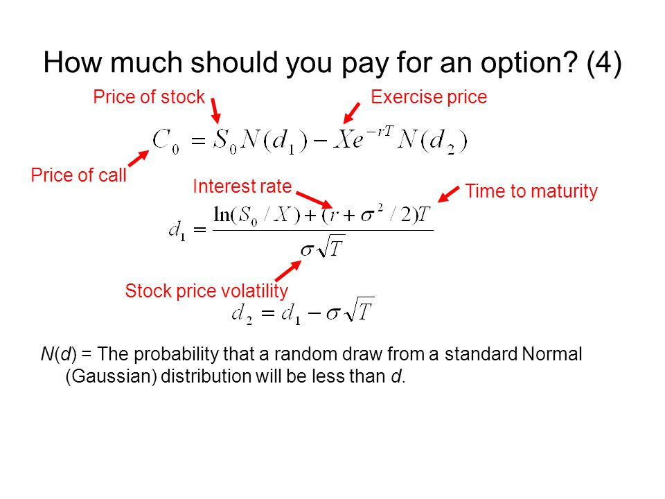 How much should you pay for an option (4)