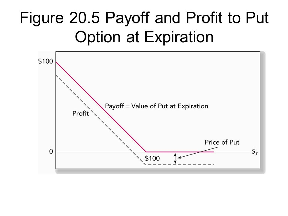 Figure 20.5 Payoff and Profit to Put Option at Expiration
