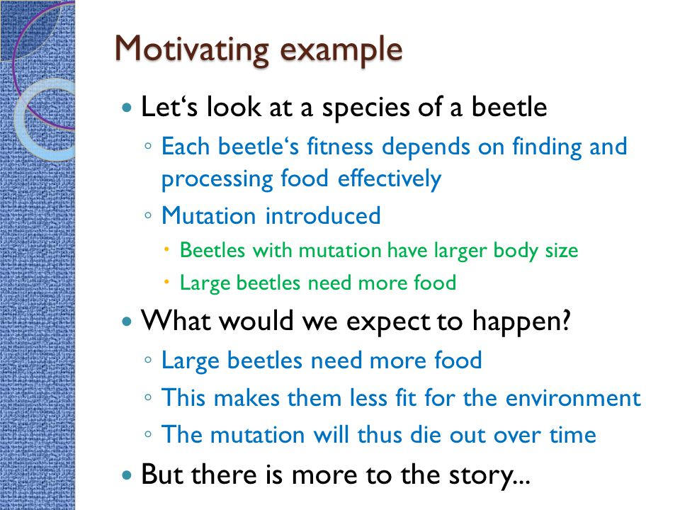 Motivating example Let's look at a species of a beetle